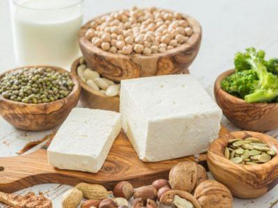 assimilation-des-proteines